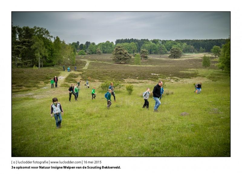 3e opkomst voor Natuur Insigne Welpen van de Scouting Bekkerveld op de Brunssummerheide.